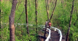 হরিণঘাটা ফুট ট্রেইল থেকে দেখুন মোহনীয় দৃশ্য