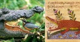 ৮০০ বছর আগেই কিতাবে এই ছবিটির রহস্য বলা হয়েছিল