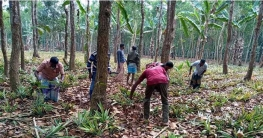 মধুপুরে বন বিভাগের আরো ৩ একর জায়গা দখল মুক্ত