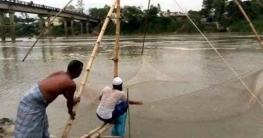 যমুনায় পানি বৃদ্ধি পাওয়ায় কালিহাতীতে মাছ শিকারে মেতে উঠেছে জেলেরা