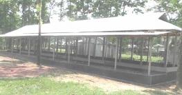 মধুপুরের বনাঞ্চলে নির্মিত হচ্ছে ১০ শয্যার হাসপাতাল
