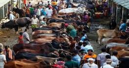 রাজধানী ঢাকার যেসব জায়গায় কোরবানির হাট বসবে