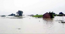 টাঙ্গাইলে যমুনা-ধলেশ্বরীতে পানি বৃদ্ধি