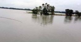 টাঙ্গাইল জেলায় সার্বিক বন্যা পরিস্থিতির উন্নতি