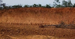 ঘাটাইলে লাল মাটি ব্যবসায়ীর ৫০ হাজার টাকা জরিমানা