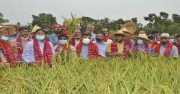 বাংলাদেশে নতুন করে কৃষি বিপ্লব ঘটবে : কৃষিমন্ত্রী