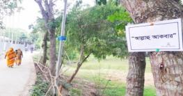 ভূঞাপুরের গাছে গাছে সাঁটানো আল্লাহ'র জিকির-গুণবাচক নাম!