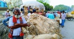 ভূঞাপুরে পাটের দামে খুশি কৃষক
